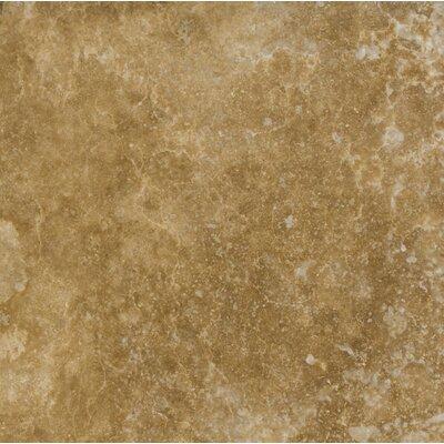 12 x 12 Travertine Field Tile in Noce Classic