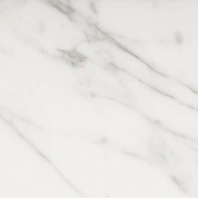 Natural Stone Marble 12 x 12 Field Tile in Bianco Nantes