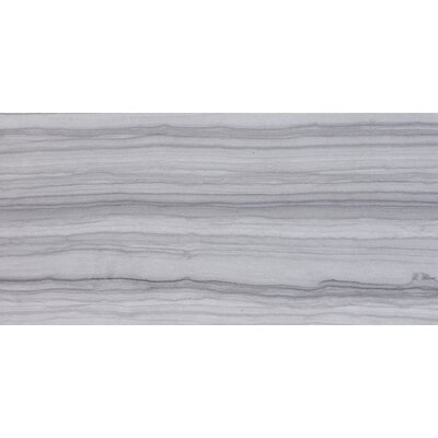 Chronicle 12 x 24 Porcelain Field Tile in Gray