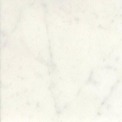 Marble 18 x 18 Field Tile in Bianco Gioia