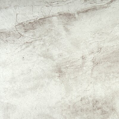 Eurasia 18 x 18 Porcelain Field Tile in Bianco
