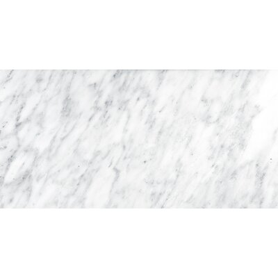 Marble 12 x 24 Tile in Winter Frost Classico