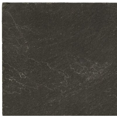 Slate 16 x 16 Field Tile in Midnight Black