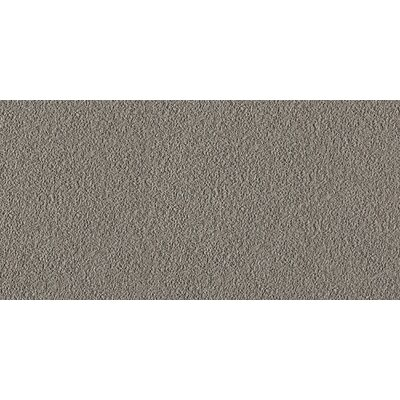 Direction 12 x 24 Porcelain Field Tile in Brown