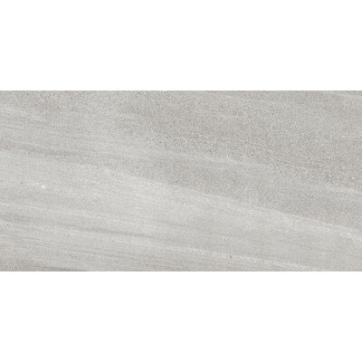 Access 12 x 24 Porcelain Field Tile in Tour