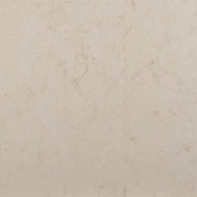 Madrid 7 x 7 Porcelain Field Tile in Brava