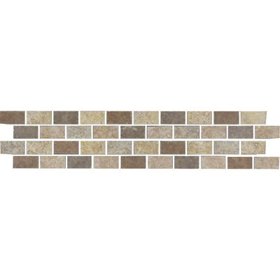 Genoa 13 x 3 Porcelain Listello Tile in Multicolor