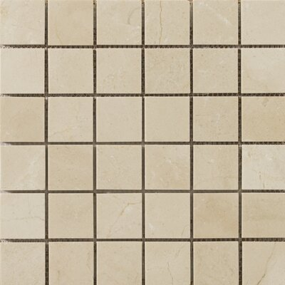 Marble 2 x 2/12 x 12 Mosaic Tile in Crema Marfil