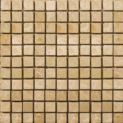 """Natural Stone 1/2"""" x 1/2"""" Polished Marble Mosaic in Emperador Light"""