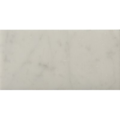 Marble 3 x 6 Subway Tile in Bianco Gioia Honed