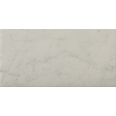 "Natural Stone 4"" x 8"" Honed Marble Field Tile in Bianco Gioia"