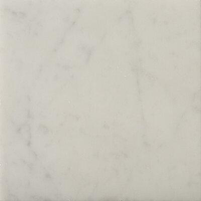 """Natural Stone 6"""" x 6"""" Honed Marble Field Tile in Bianco Gioia"""