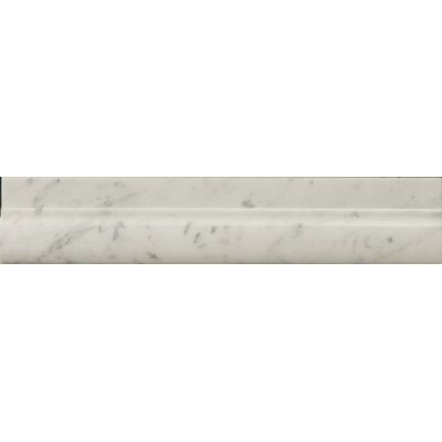 Natural Stone 12 x 2 Polished Marble OG in Bianco Gioia
