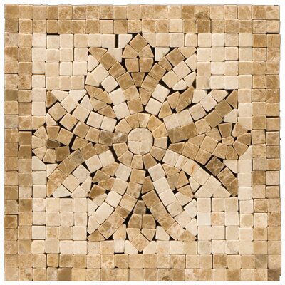 Natural Stone 4 x 4 Marble Teatro Listello Tile in Brown/Beige