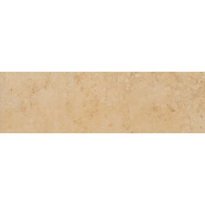 Odyssey 13 x 3 Surface Bullnose Tile Trim in Oro