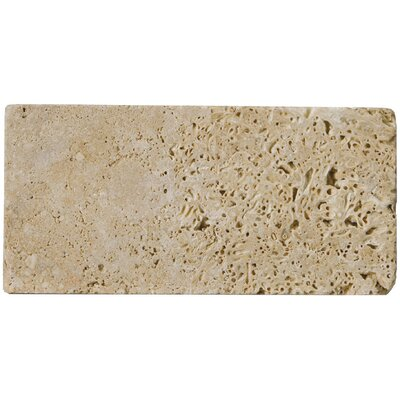 Travertine 3 x 6 Subway Tile in Unfilled Tumbled Mocha