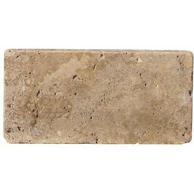 Travertine 16 x 24 Field Tile in Ancient Tumbled Mocha
