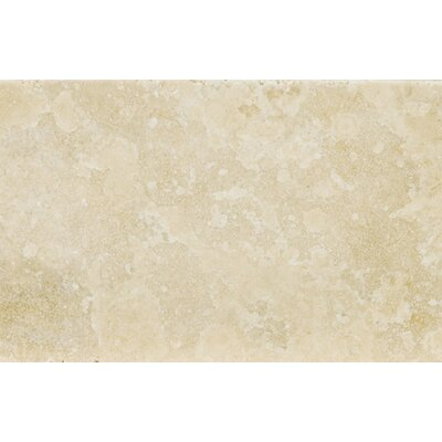 Travertine 8 x 12 Field Tile in Ancient Tumbled Beige