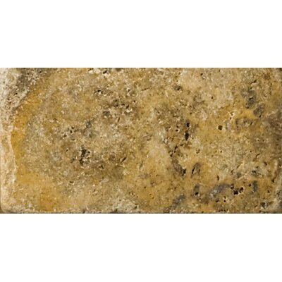 Natural Stone 3 x 6 Travertine Field Tile in Scabos