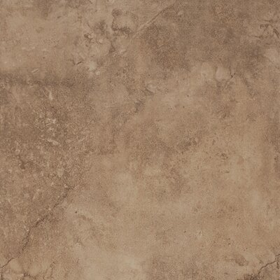 Coliseum 20 x 20 Porcelain Field Tile in Glazed Rome