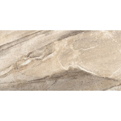 Eurasia 12 x 24 Porcelain Field Tile in Chiara