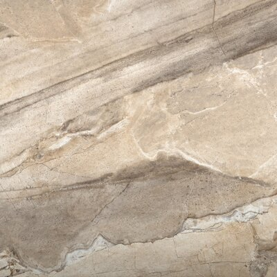 Eurasia 18 x 18 Porcelain Field Tile in Chiara