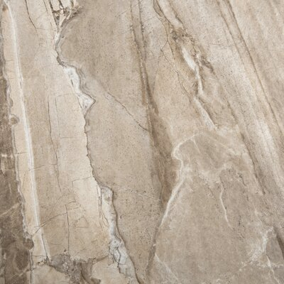 Eurasia 18 x 18 Porcelain Field Tile in Cafe