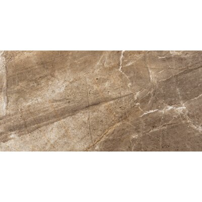Eurasia 12 x 24 Porcelain Field Tile in Noce
