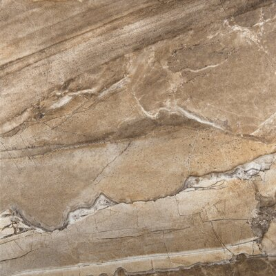 Eurasia 13 x 13 Porcelain Field Tile in Noce