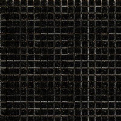 Granite 12 x 12 Mosaic Tile in Absolute Black