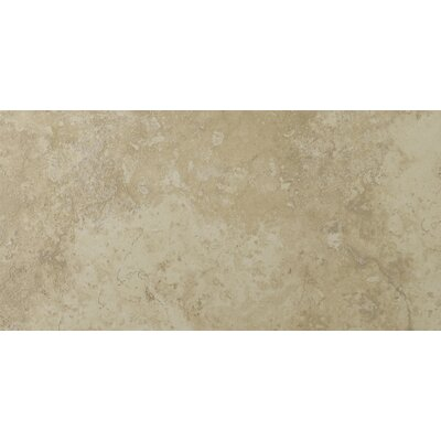 Lucerne 12 x 24 Porcelain Field Tile in Alpi