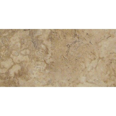 Lucerne 12 x 24 Porcelain Field Tile in Pilatus