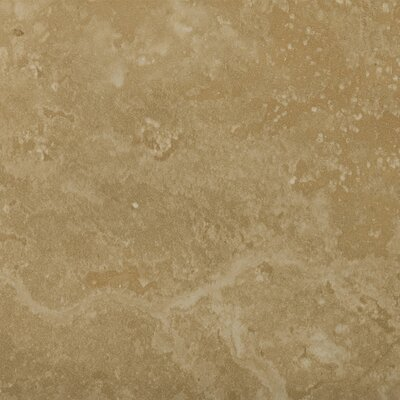 Madrid 20 x 20 Porcelain Field Tile in Brava