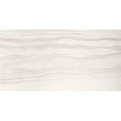 Motion 12 x 24 Porcelain Field Tile in Advance
