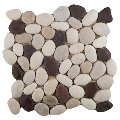 Venetian Random Sized Pebble Mosaic Tile in Gelato
