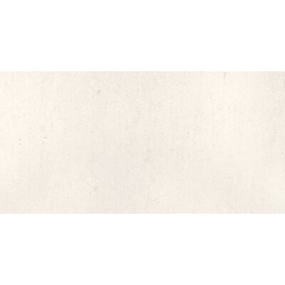 Pietre Del Nord 12 x 24 Porcelain Field Tile in Polished Maine