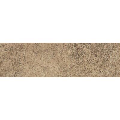 Toledo 13 x 3 Bullnose Tile Trim in Noce (Set of 2)