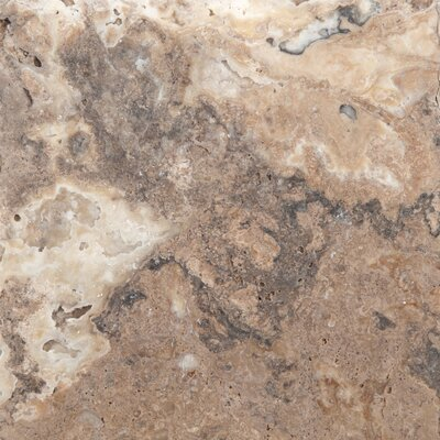 Travertine 8 x 8 Chiseled Field Tile in Onyx