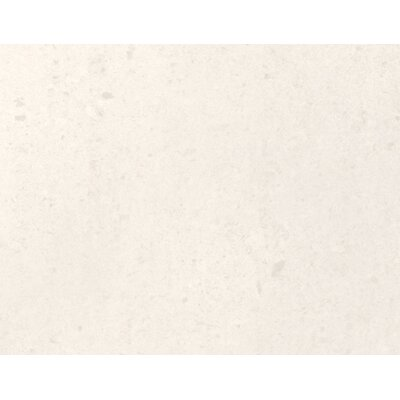 Pietre Del Nord 12 x 12 Porcelain Field Tile in Polished Maine