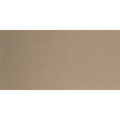 Direction 12 x 24 Porcelain Field Tile in Proportion Tex tured