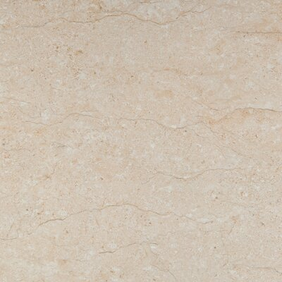 Park Avenue 16 x 16 Porcelain Field Tile in Marfil Polished