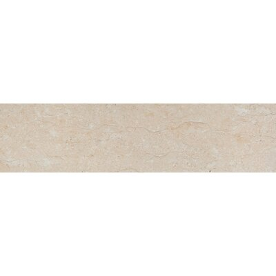 Park Avenue 8 x 32 Porcelain Field Tile in Marfil Polished