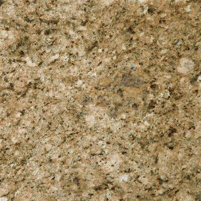Granite 12 x 12 Field Tile in Giallo Veneziano