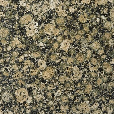 Granite 12 x 12 Field Tile in Baltic Brown
