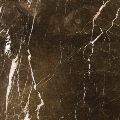 "Natural Stone 12"" x 12"" Marble Tile in St. Croix Brown"