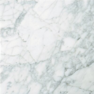 "Natural Stone 12"" x 12"" Marble Tile in Nantes"