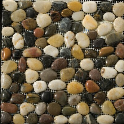 Rivera Pebbles 12 x 12 Mosaic in 4-Color Blend