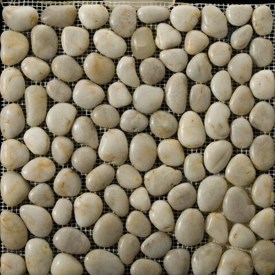 Rivera Pebbles 12 x 12 Mosaic in Cream