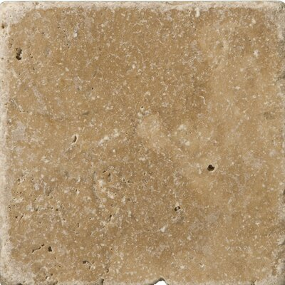 Travertine 4 x 4 Tile in Vino Tumbled Noce