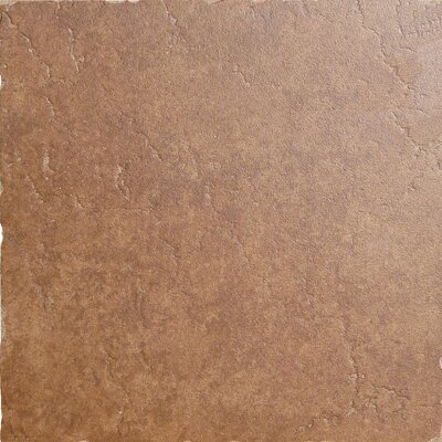 Genoa 7 x 7 Porcelain Field Tile in Sauli